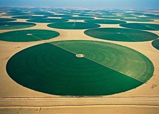 krugi na poljah oroshenie