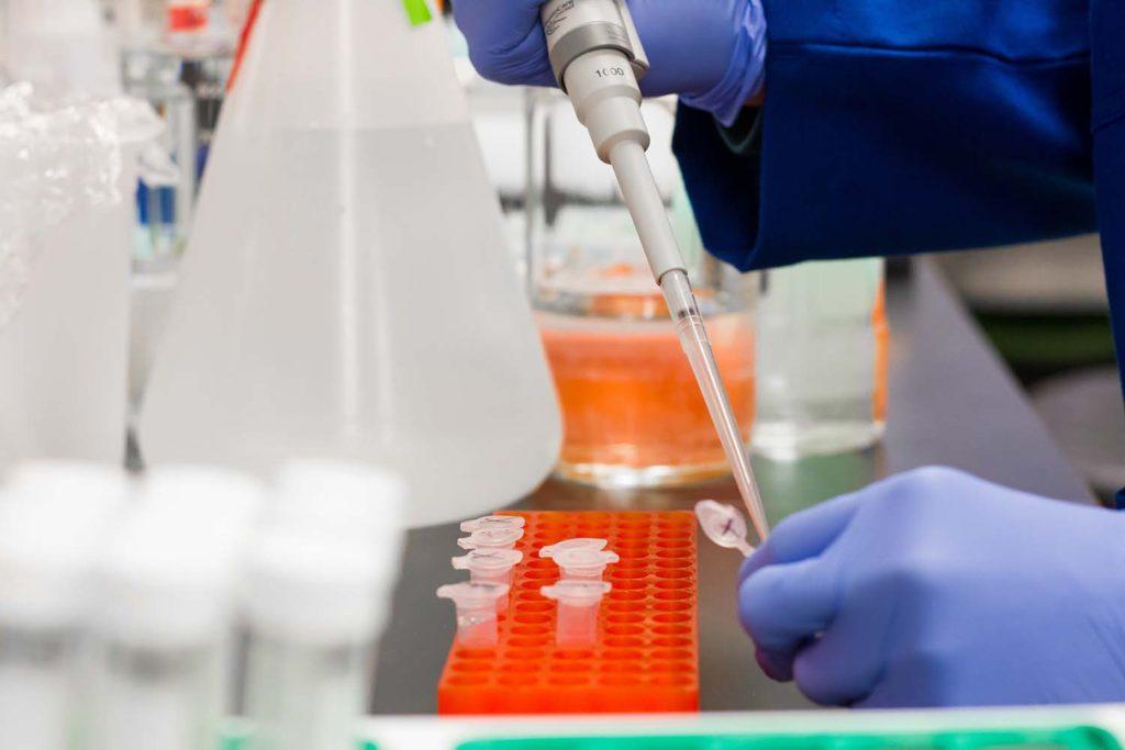 Лекарство против коронавируса: антитело STI-1499 справляется сSARS-CoV-2 зачетыре дня
