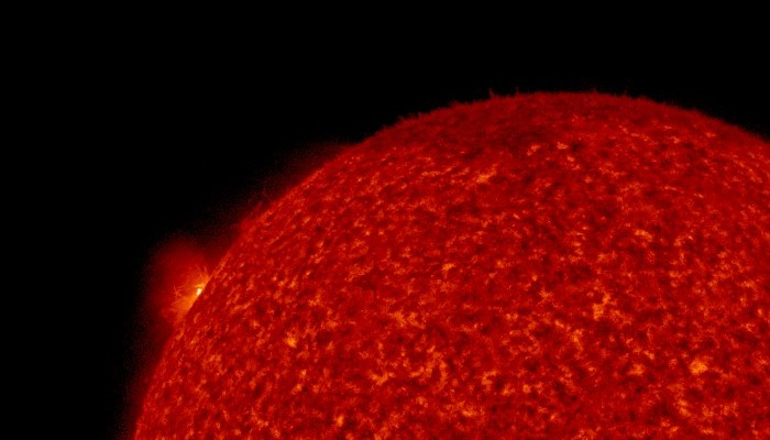 Область вспышки 29 мая 2020 года (слева на краю солнечного диска). Изображение телескопа AIA на космическом аппарате SDO в линии 30,4 нм. Источник фото: Лаборатория рентгеновской астрономии солнца ФИАН.