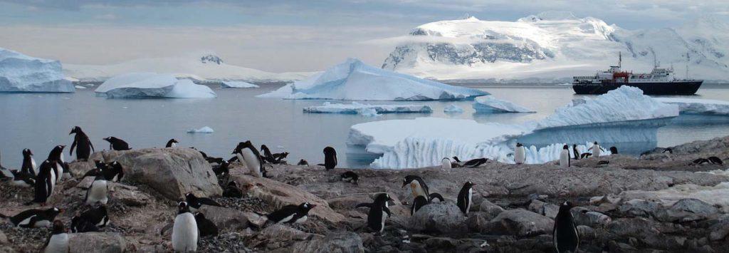 Гибель антарктического морского льда угрожает жизни вокеане