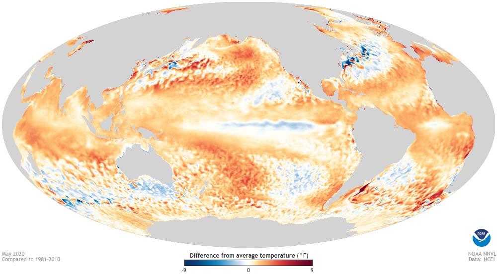Глобальный прогноз показывает, что лето-2020 будет нетаким, как ожидалось