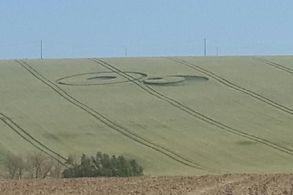 Рисунок на поле обнаружили во Франции, в 30 километрах от Тулузы, рядом с деревней Тарабель.