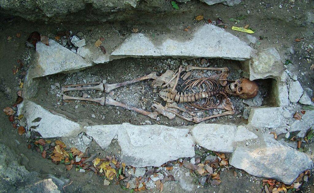 Ученые доказали, что далеко невсе викинги были скандинавами