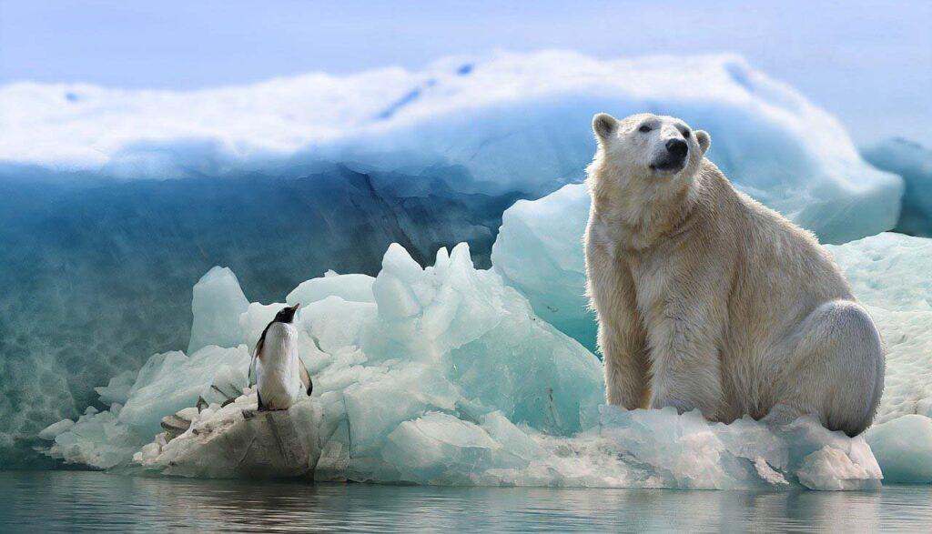 Арктика быстро переходит вновое климатическое состояние