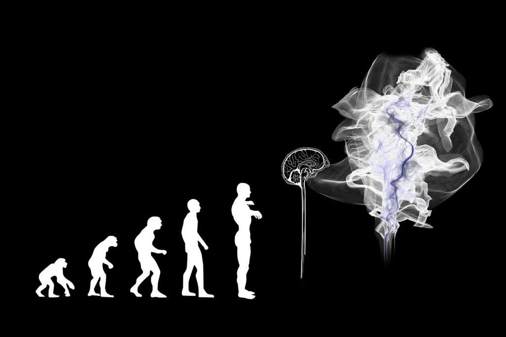 За40 тысяч лет объем мозга учеловека уменьшился на10%