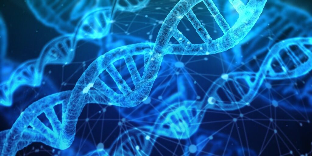 Теория отом, что жизнь наЗемле возникла изсмеси РНК иДНК получила подтверждение