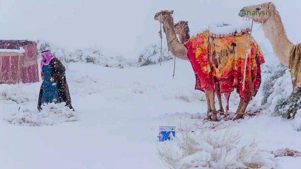 Всередине января 2021 вСахаре выпал снег