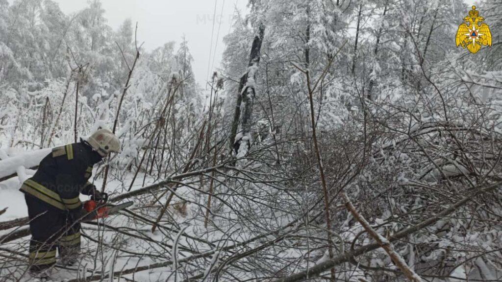 ВПсковской иТверской областях России многие жители остались без света из-за снегопадов