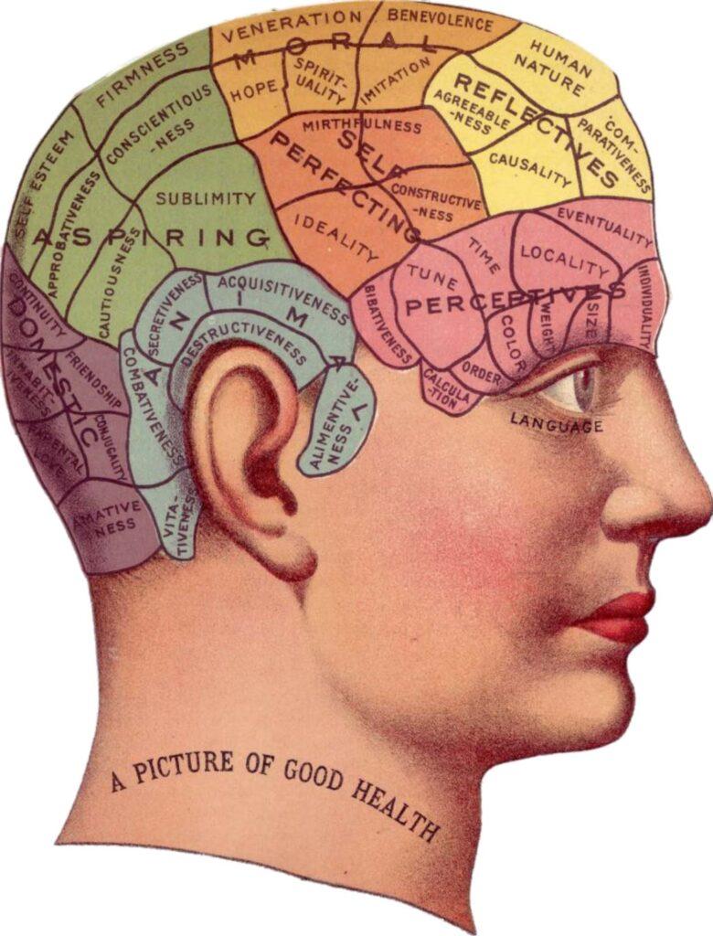 Ученые показали неожиданный выбор человека между болью инапряжением ума