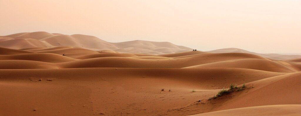 Ученые реконструировали климат Сахары вдревности