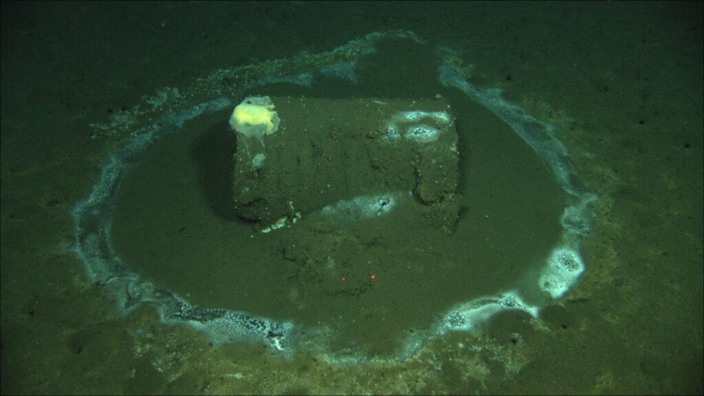 Надне Тихого океана нашли 25 тысяч бочек сДДТ ихимическими отходами
