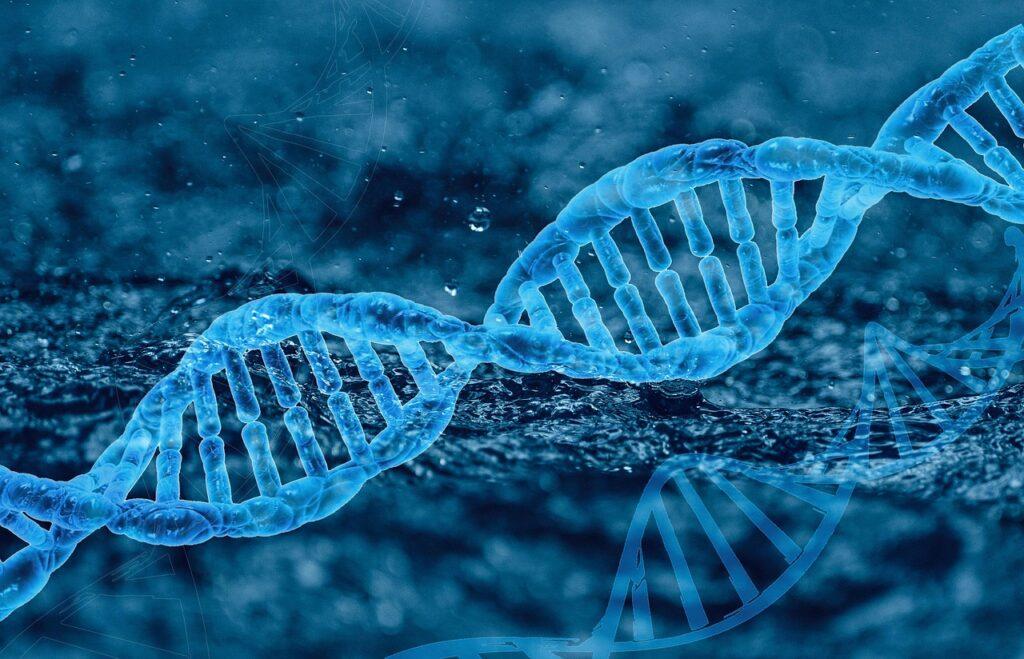 Ученые изДубны научились определять генетическую предрасположенность кдолголетию