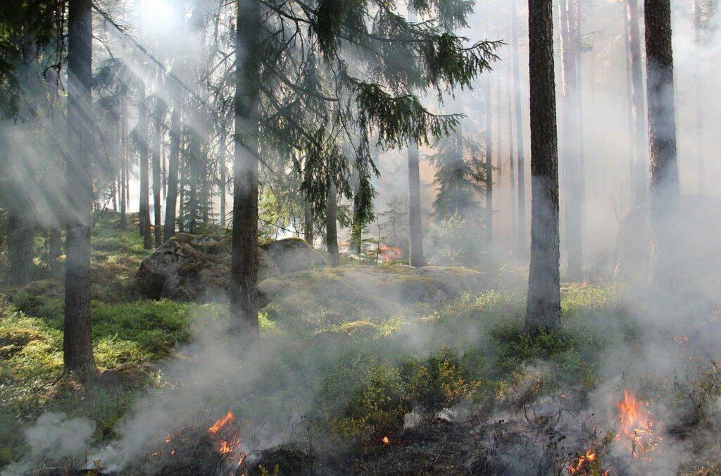 Впоселках Челябинской области ввели режим МЧС иэвакуируют людей из-за пожаров