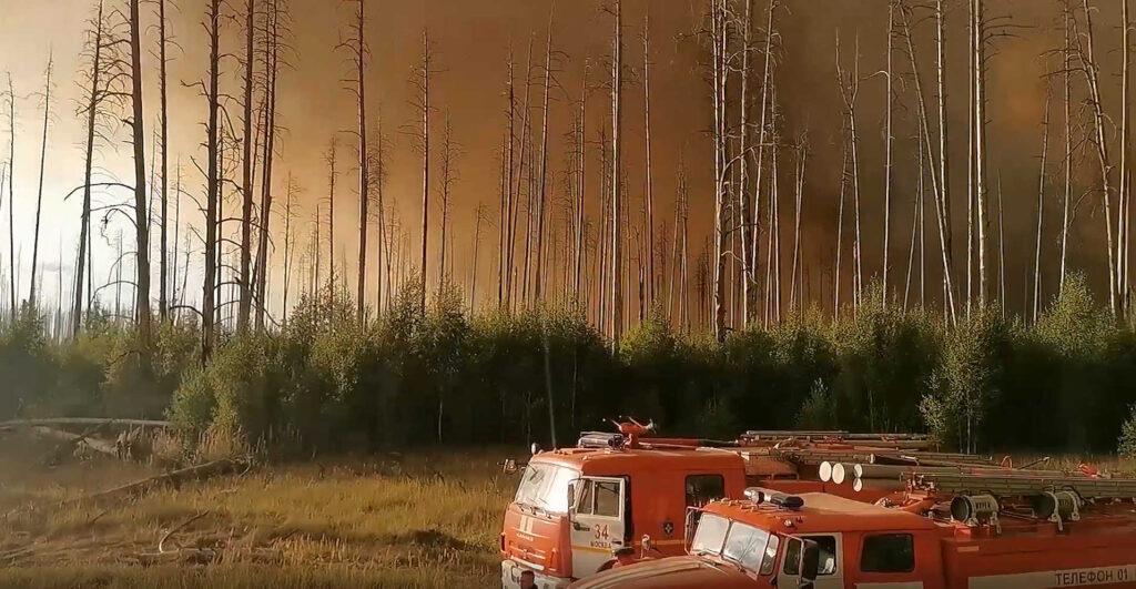 55 пожарных попали вогненное кольцо влесном пожаре вМордовии ичудом вырвались. Видео