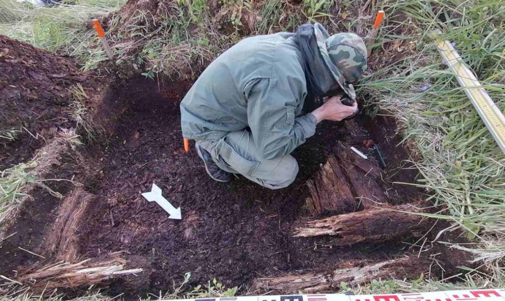 jamal rabota arheologa