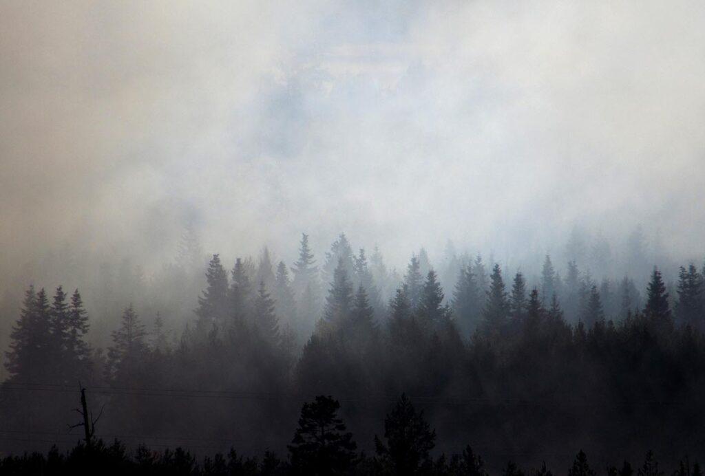 Ученые оценили шанс человечества наспасение откатастрофических последствий глобального потепления